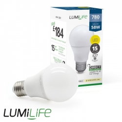 Ampoule E27 9W forme globe - Blanc Froid - Dimmable