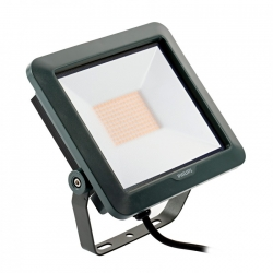 Projecteur LED Floodlight Mini 50W BVP105