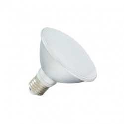 Ampoule LED E27 PAR30 10W Waterproof IP65